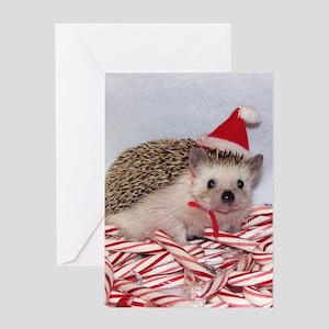 Maizy Greeting Card