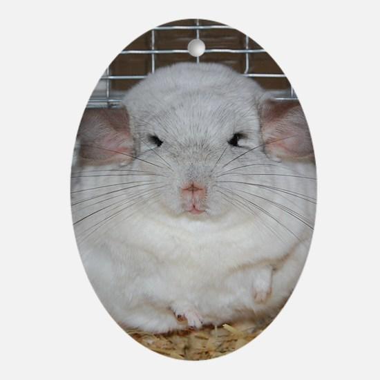 Marshmallow Oval Ornament