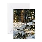 Simplicity's Pleasure (10 Greeting Cards)