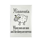 Minnesota Sheep Rectangle Magnet (10 pack)
