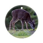 Little Fawn Ornament (Round)
