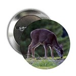 "Little Fawn 2.25"" Button"