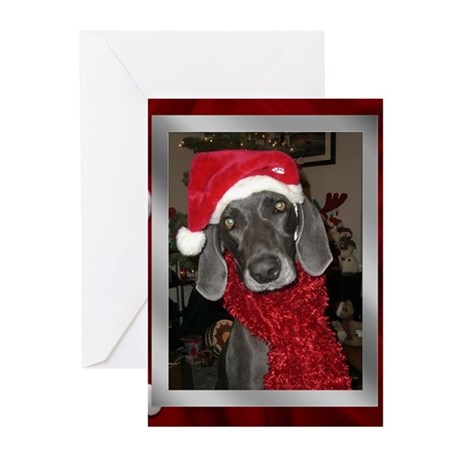 Blue Christmas Greeting Cards (Pk of 20)