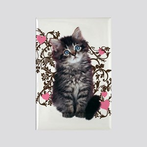 Cute Kitten Kitty Cat Lover Rectangle Magnet
