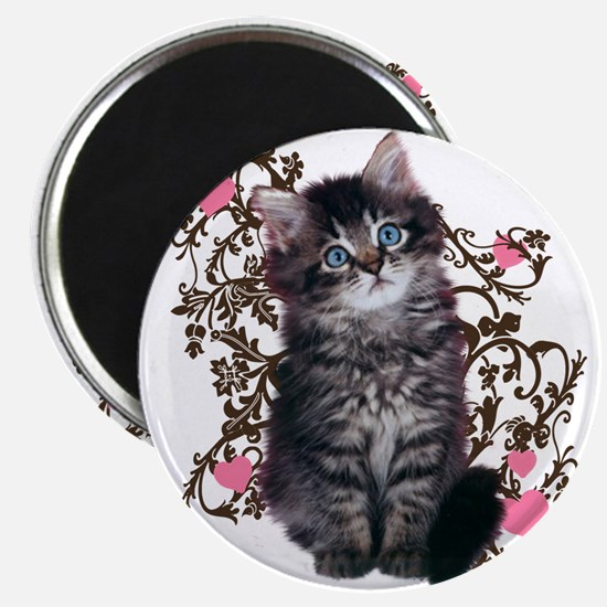 Cute Kitten Kitty Cat Lover Magnet