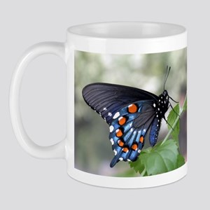 Pipevine Swallowtail Butterfly Mug