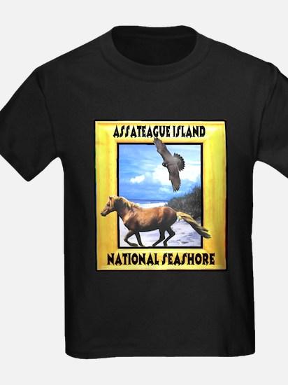 Assateague island national Se T