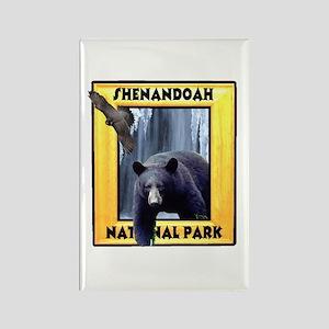 Shenandoah Nationl Park Bear Rectangle Magnet