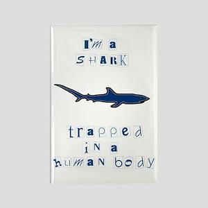 I'm a Shark Rectangle Magnet