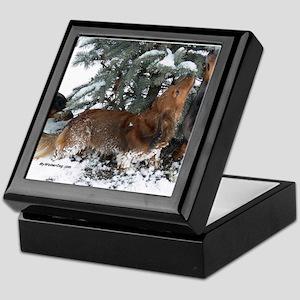 Foxy Weiner Dog Keepsake Box