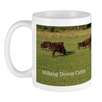 Milking Devon Cattle Mug