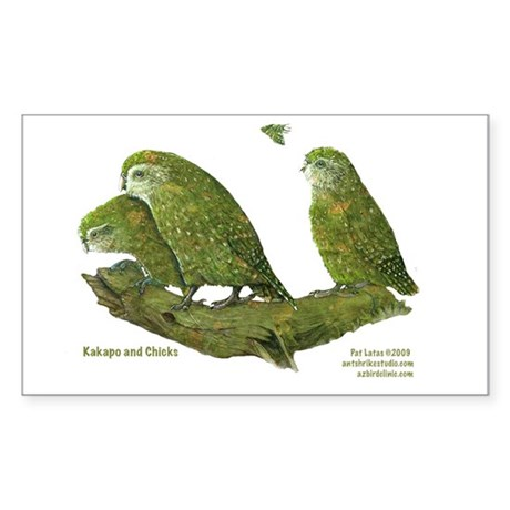 Kakapo and Chicks Rectangle Sticker