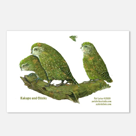 Kakapo and Chicks Postcards (Package of 8)