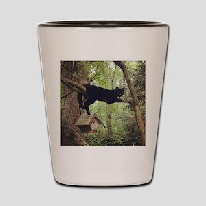 Black Cat Birdhouse Shot Glass