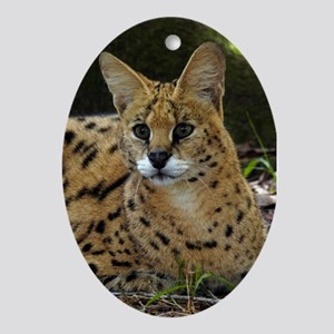Serval Oval Ornament