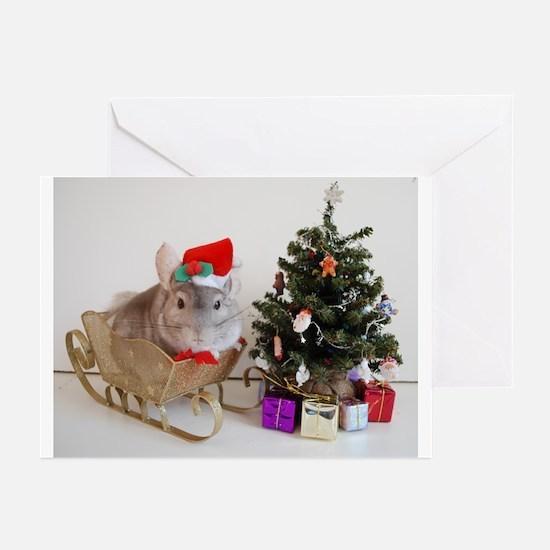 Cute Chinchilla christmas Greeting Cards (Pk of 20)