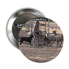 Herding Dog Art Button