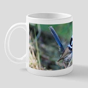 Variegated Fairy-wren Mug