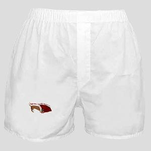 Toy Bag Boxer Shorts