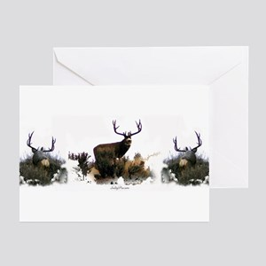 Big Mule Deer,Greeting Cards (Pk of 10)