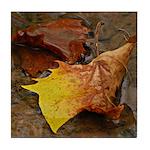 Autumn Leaves Tile Coaster