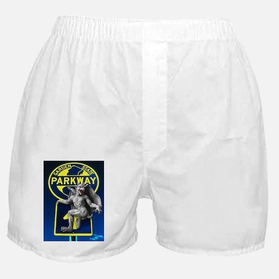 N.J. GS PARKWAY DEVIL, Boxer Shorts