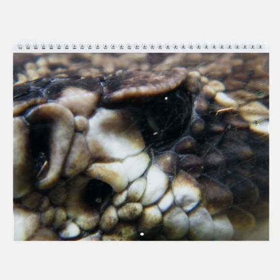 Snakes Wall Calendar
