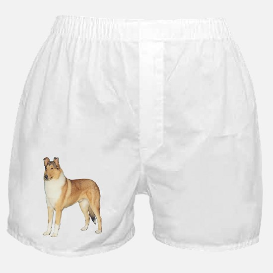 Smooth Collie Gifts Boxer Shorts