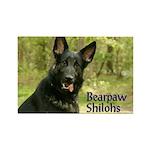 Bearpaw Shilohs Rectangle Magnet :2011