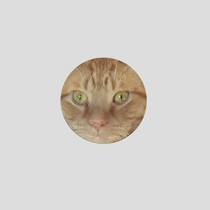 Orange Tabby Cat Mini Button