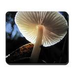 Mushroom Gills Backlit Mousepad