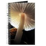 Mushroom Gills Backlit Journal