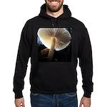Mushroom Gills Backlit Hoodie (dark)