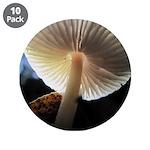 """Mushroom Gills Backlit 3.5"""" Button (10 pack)"""