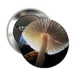 "Mushroom Gills Backlit 2.25"" Button"