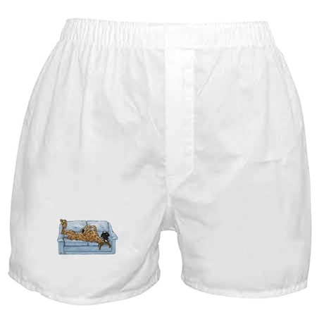 NBr On Couch Boxer Shorts