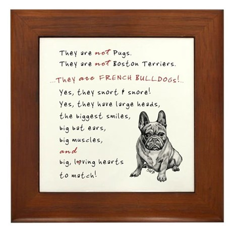 THEY are not Pugs (Serious Frenchie) Framed Tile