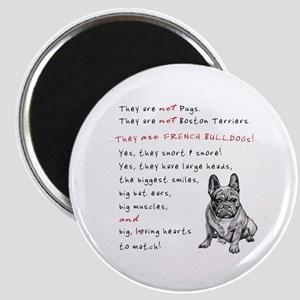 THEY are not Pugs (Serious Frenchie) Magnet