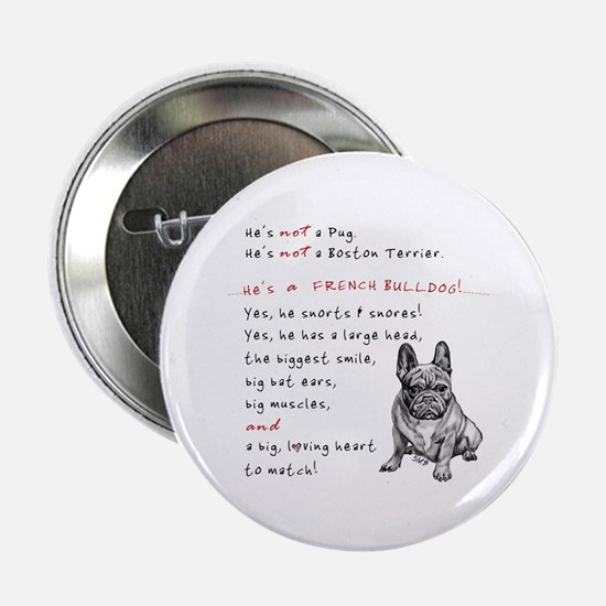 "HE'S not a Pug! (Serious) 2.25"" Button"