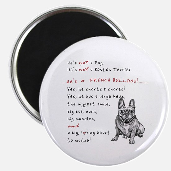 HE'S not a Pug! (Smiling) Magnet