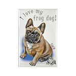 Frog Dog (BM FAWN, BOY) Rectangle Magnet (10 pack)