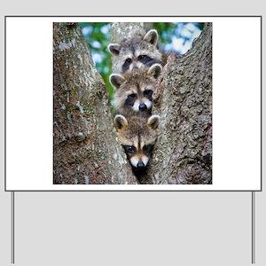 Baby Raccoon Trio Yard Sign