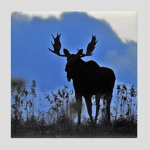 Bull at dusk Tile Coaster