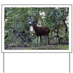 Buck and Doe Yard Sign