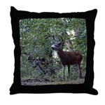 Buck and Doe Throw Pillow