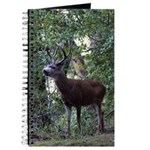 Buck and Doe Journal