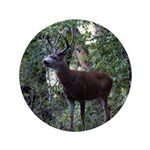 """Buck and Doe 3.5"""" Button (100 pack)"""