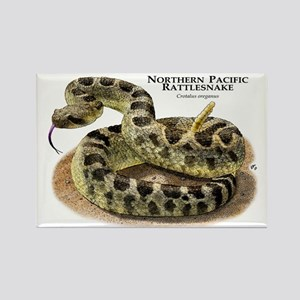 Northern Pacific Rattlesnake Rectangle Magnet