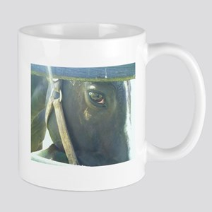 Williamstown's Eye Mug