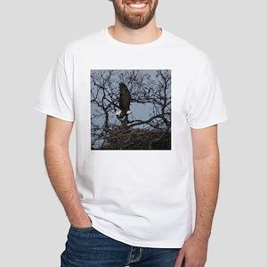 Llano County American bald eagle White T-Shirt